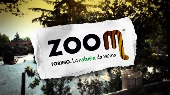 Convenzione: PARCO ZOOM TORINO
