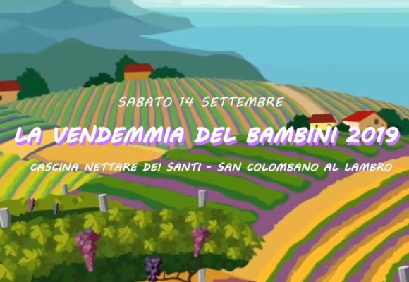 You are currently viewing La vendemmia dei bambini 2019